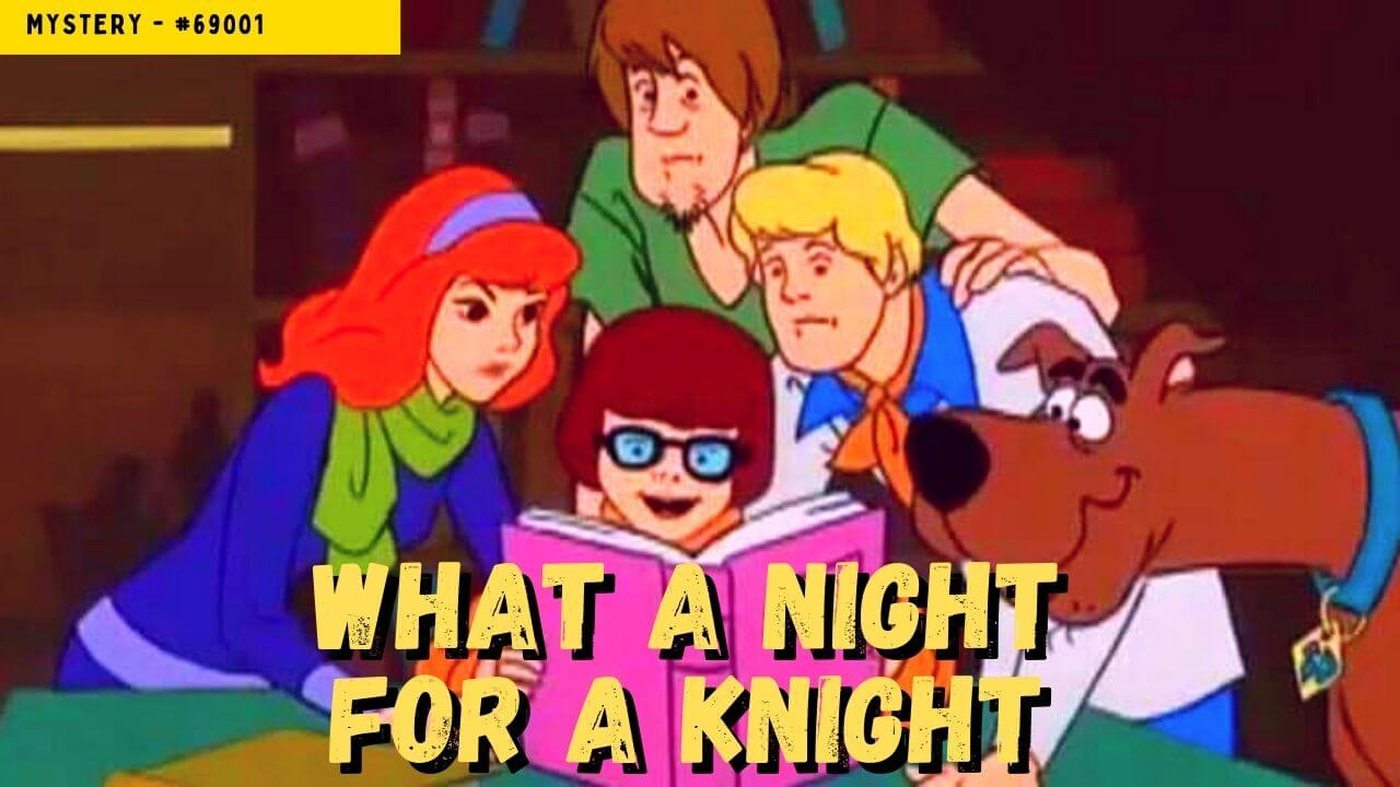 Read more about the article What a Night for a Knight