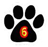 six Paws