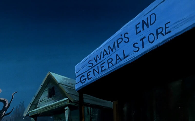 swamps end general store