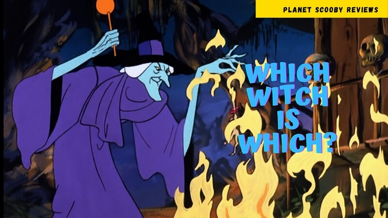 Read more about the article Which Witch Is Which?